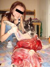 В Запорожье жестоко зарезали собаку Fkf%5B158926%5D%28165x220%29