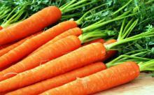 Правильное сочетание продуктов питания поможет оздоровить организм, Общество, E-News: новости Украины и Мира